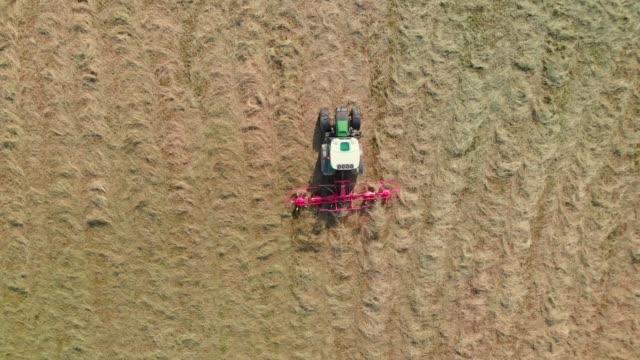 フィールド上の乾燥干し草を回すトラクター - 穀物 ライムギ点の映像素材/bロール