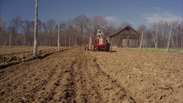ws tu tractor working in tobacco land - 1959 stock-videos und b-roll-filmmaterial