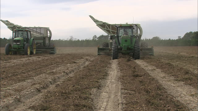 tractors pull harvesters over rows of peanut plants. - food and drink industry stock videos & royalty-free footage