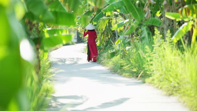 traditional asian female on banana plantation walkway vietnam - 赤のドレス点の映像素材/bロール