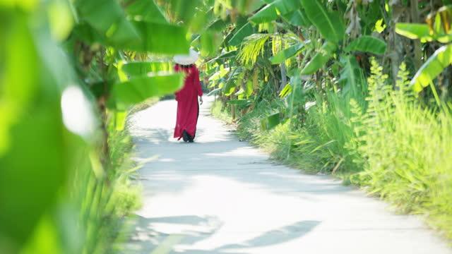 traditional asian lady walking through banana plantation vietnam - 赤のドレス点の映像素材/bロール