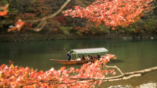 traditional boat in katsura river amid autumn leaf forest at arashiyama - kyoto prefecture stock videos and b-roll footage