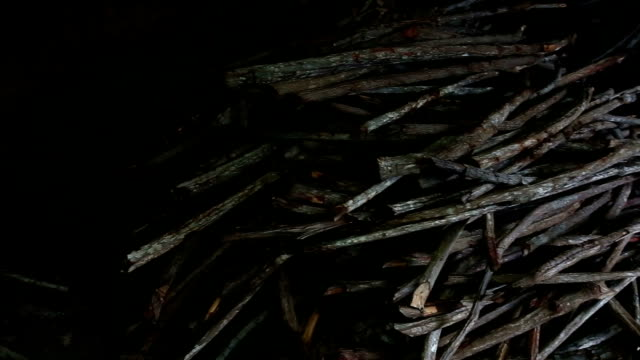 Traditional Charcoal Production