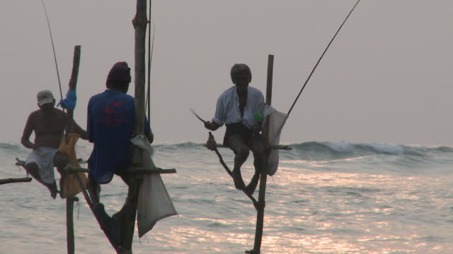 ms traditional fishermen fishing / mirissa, southern province, sri lanka   - sri lankan culture stock videos & royalty-free footage