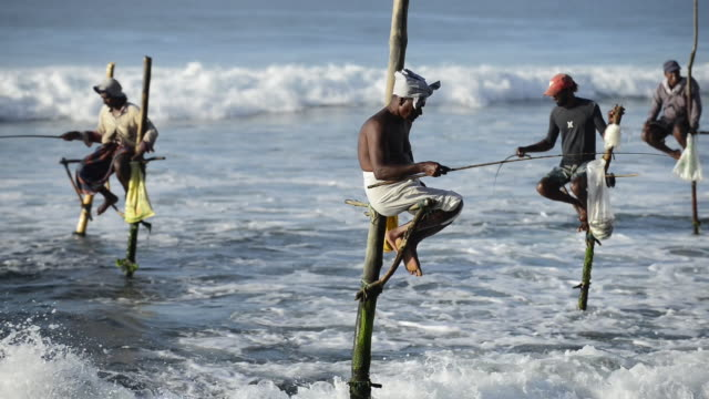 traditional fishermen in weligama, sri lanka - sri lanka stock videos and b-roll footage