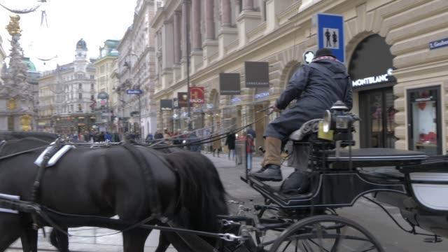 traditional horse and carriage leading into graben, vienna, austria, europe - vienna austria stock videos & royalty-free footage