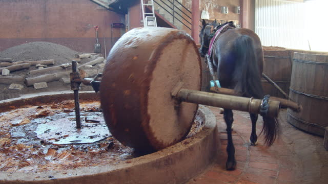 traditional horse millstone grinding agave core. homemade mezcal production. man using a pitchfork. wooden vats with fermented agave on the foreground - pitchfork stock videos & royalty-free footage