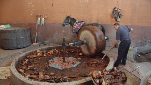 traditional horse millstone mashing agave core. man using a pitchfork - millstone stock videos & royalty-free footage