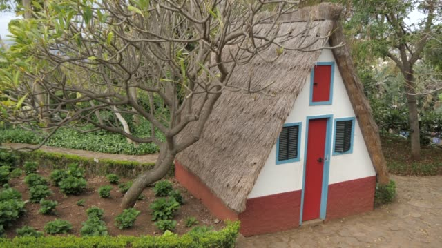 traditional house in botanical gardens, funchal, madeira, portugal, atlantic, europe - thatched roof stock videos & royalty-free footage