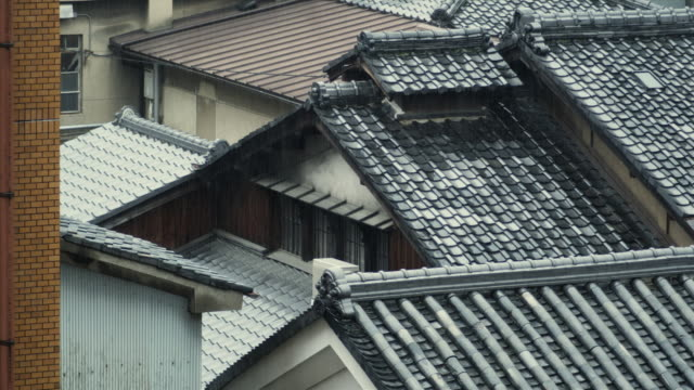 MS HA Traditional Japanese roofs in rain, Kyoto, Japan