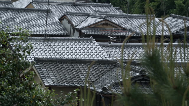 ms traditional japanese roofs, kyoto, japan - 住宅点の映像素材/bロール