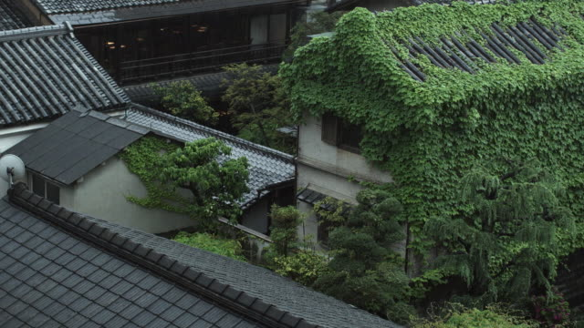 MS HA Traditional Japanese roofs with vegetation in rain, Kyoto, Japan