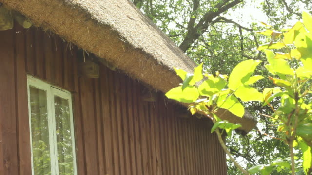 Traditional Polish thatched roof House Exterior