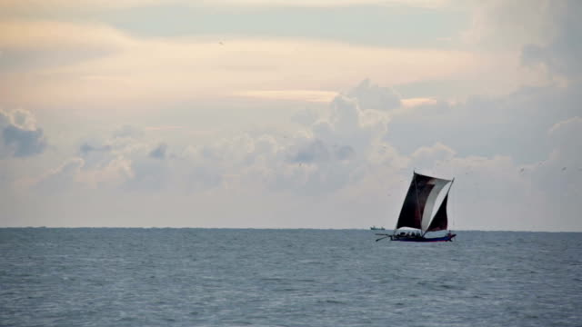 traditional sri lankan sailboat, negombo - sri lankan culture stock videos and b-roll footage