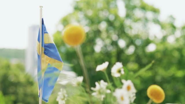 traditionelles schwedisches mittsommer-dinner im freien - sweden stock-videos und b-roll-filmmaterial
