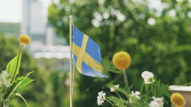 traditional swedish midsummer dinner outdoors - svezia video stock e b–roll