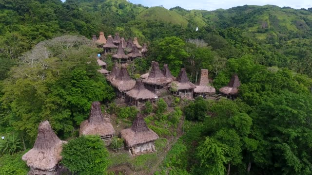 traditional village in sumba, indonesia - indigenous culture stock videos & royalty-free footage