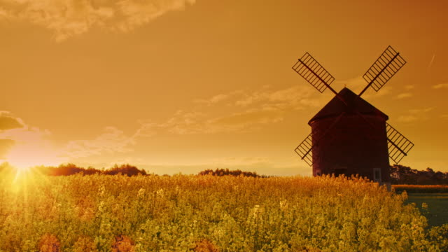 ds traditional windmill at sunset - remote location video stock e b–roll
