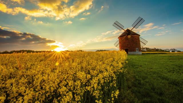 stockvideo's en b-roll-footage met t/l traditionele windmolen op het platteland van moravië bij zonsopgang - tsjechische cultuur