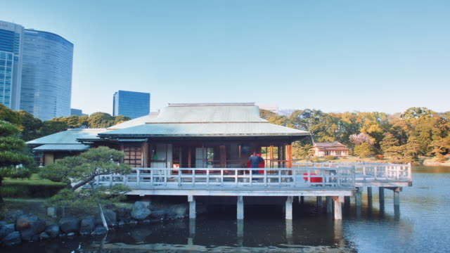 vídeos de stock, filmes e b-roll de ms, traditionnal teahouse overlooking a pond in the hama-rikyu gardens, woman working - washitsu