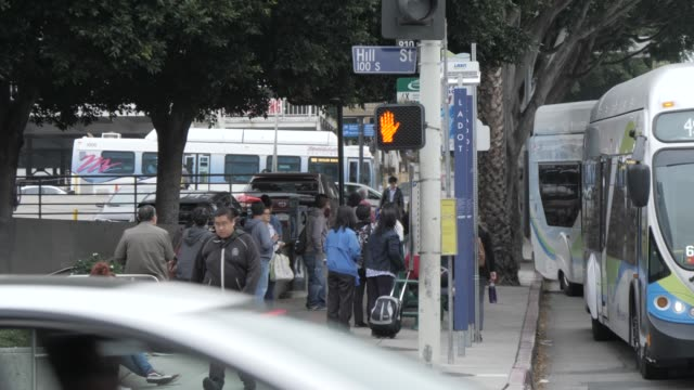 traffic and  near city hall, downtown, los angeles, california, united states of america, north america - bus stop stock videos & royalty-free footage