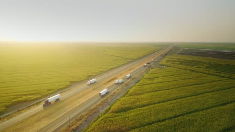 i-5 traffic between cornfields and cattle farm - aerial shot - american interstate stock videos & royalty-free footage