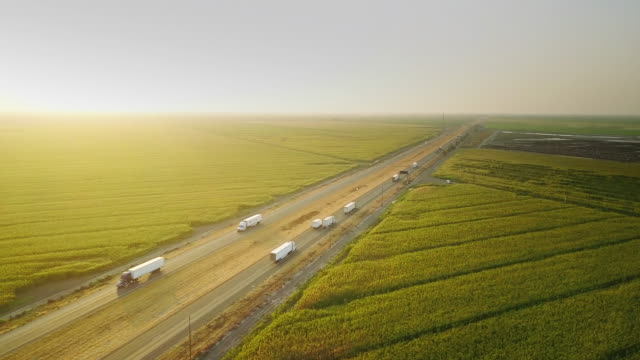 i-5 traffic between cornfields and cattle farm - aerial shot - autostrada interstatale americana video stock e b–roll