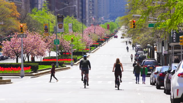 traffic disappeared from park avenue for impact of covid-19, which is surrounded by row of full-bloomed cherry blossoms in the weekend afternoon at uptown manhattan new york city ny usa on apr. 19 2020. - avenue stock videos & royalty-free footage
