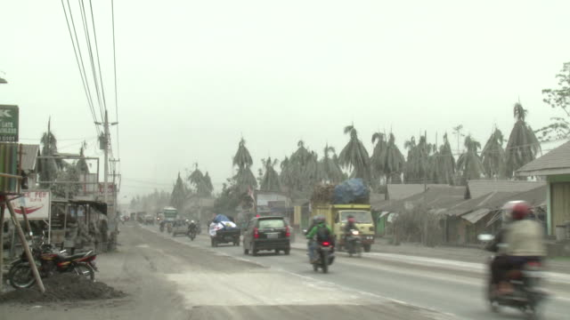 traffic drives on highway lined with damaged trees from ash fallout from merapi volcano eruption; indonesia. 7 november 2010 / audio - 2010 stock videos & royalty-free footage