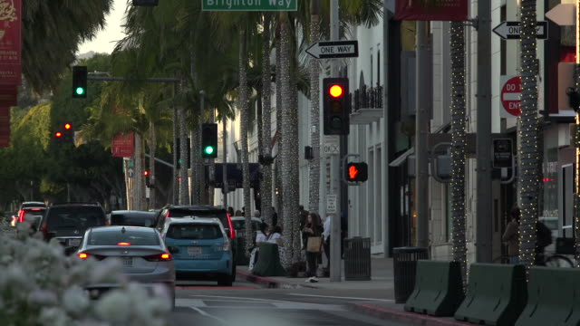 traffic intersecting on rodeo drive toward santa monica blvd at golden hour through flowers on the traffic divider in the foreground, beverly hills - santa monica blvd stock videos & royalty-free footage
