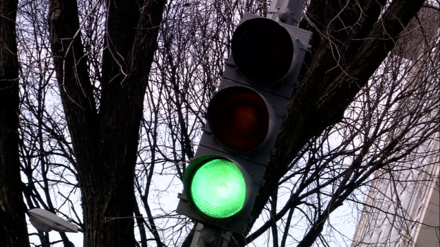 stockvideo's en b-roll-footage met a traffic light changes from green to yellow to red against a bare tree. - bare tree