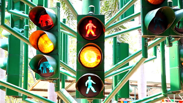 traffic light - traffic light stock videos & royalty-free footage