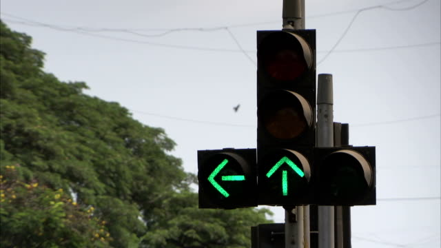 traffic light with green filter arrows available in hd - indian arrowhead stock videos and b-roll footage