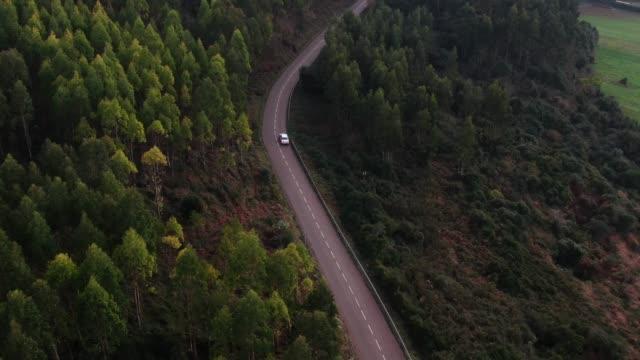 フォレストによる曲線の道路上のトラフィック - 曲線点の映像素材/bロール