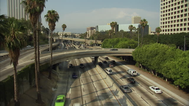 ws, ha, traffic on highway, los angeles, california, usa - fan palm tree stock videos & royalty-free footage