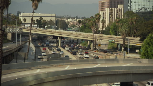 ws, ha, focusing, traffic on highway, los angeles, california, usa - fan palm tree stock videos & royalty-free footage