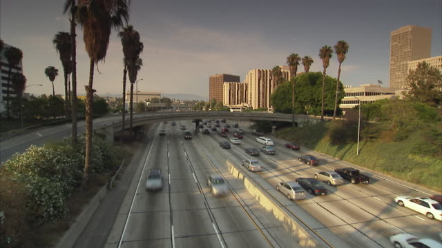 ws, ha, traffic on highway, los angeles, california, usa - fan palm tree stock videos & royalty-free footage