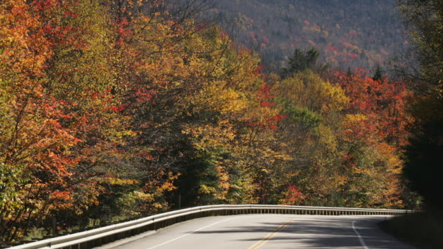 vídeos de stock, filmes e b-roll de t/l ws traffic on kancamagus highway, autumn / new hampshire, usa - time lapse de trânsito