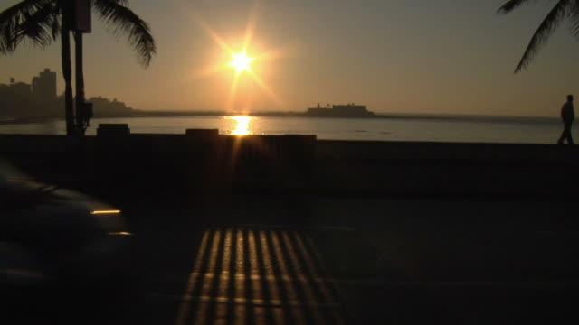 ms, traffic on road at sunset, haji ali, mumbai, maharashtra, india - fan palm tree stock videos & royalty-free footage