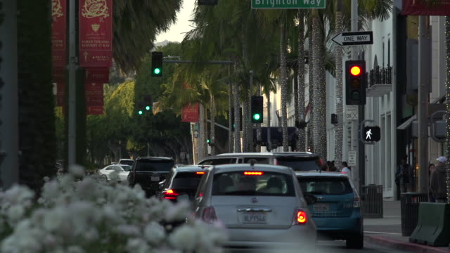 traffic on rodeo drive toward santa monica blvd at golden hour through flowers on the traffic divider in the foreground, beverly hills - santa monica blvd stock videos & royalty-free footage