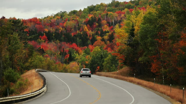 t/l ws traffic on rural road in white mountains, autumn / new hampshire, usa - 曲線点の映像素材/bロール