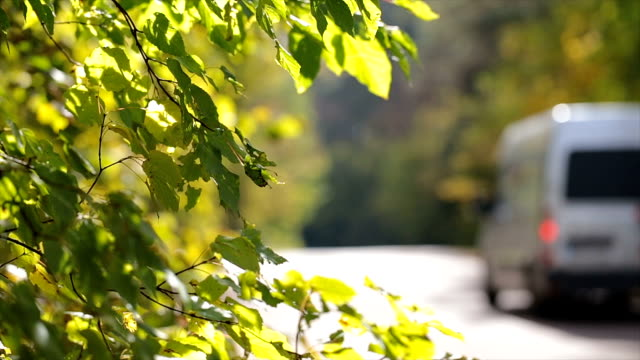 traffic on the road. leaves near the road. - van vehicle stock videos and b-roll footage