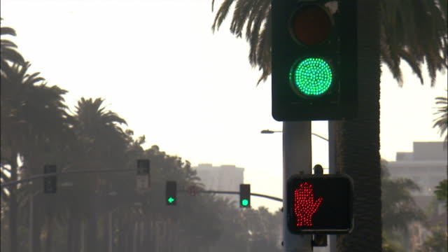 Traffic signal changing from green to red and pedestrian signal blinking don't walk alert / Santa Monica, Los Angeles, California