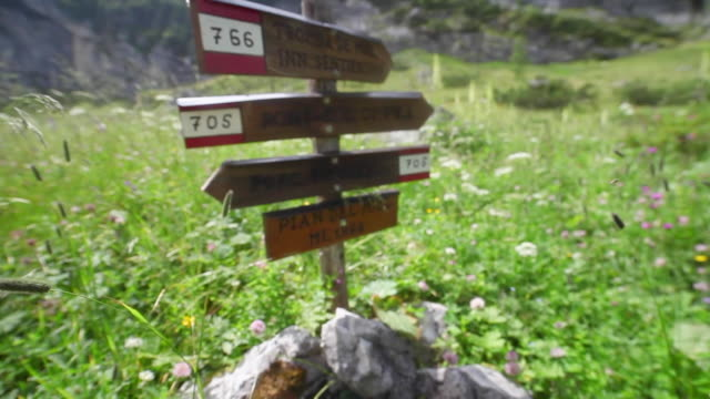 trail marker signs on a trail in the mountains. - goodsportvideo stock videos and b-roll footage