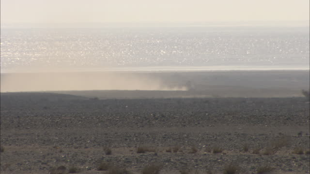 a trail of dust rises as suvs travel near the sparkling red sea. - red sea stock videos & royalty-free footage