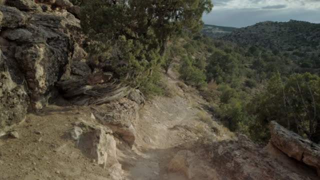 trail overlook hike features individual focal points in wilderness area in arid climate 4k video - coniferous stock videos & royalty-free footage