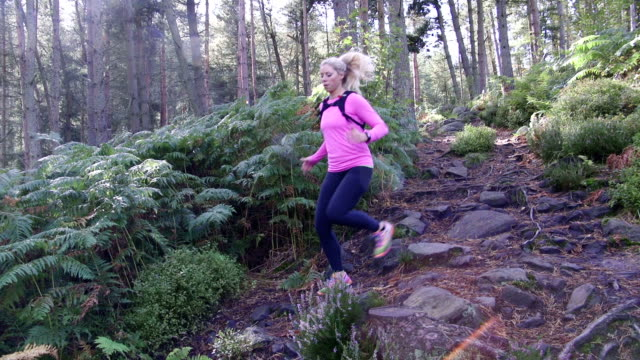 trail runner - cross country running stock videos and b-roll footage