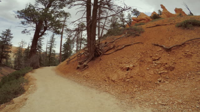 pov trail running at bryce canyon national park, peek a boo trail - strada in terra battuta video stock e b–roll
