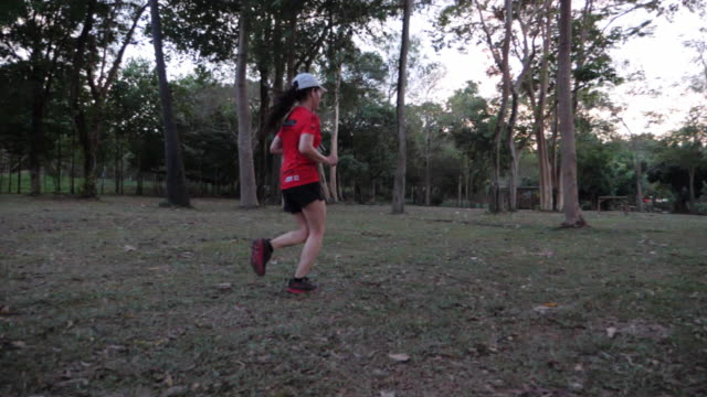 Trail running athlete moving into the wood