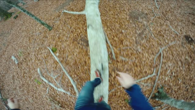 POV trail running: balance on a timber